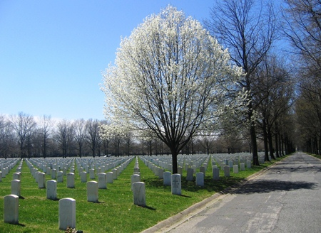 Burial area at Beverly National Cemetery.