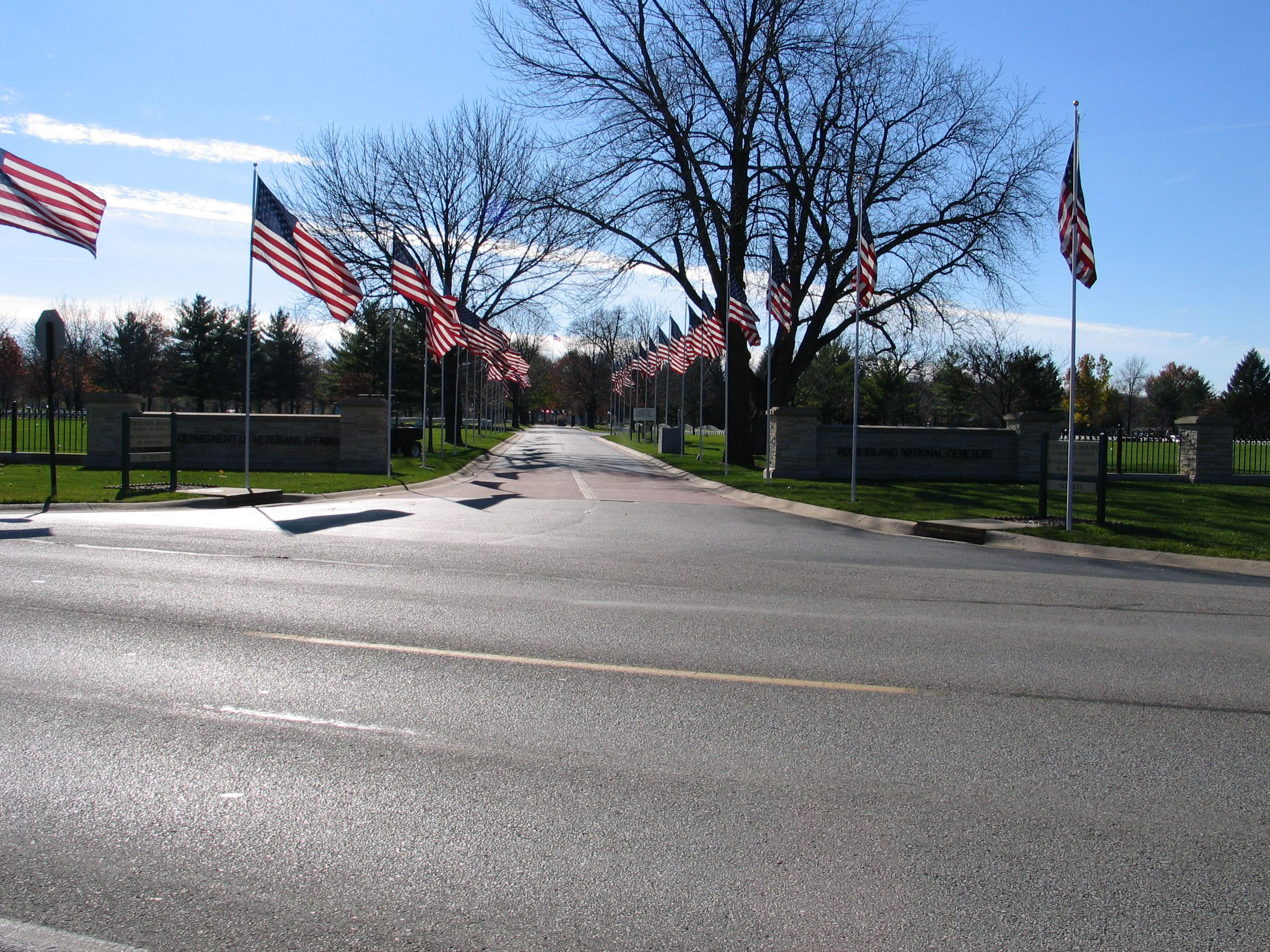 Picture of a cemetery's avenue of flags