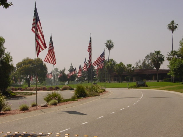 Picture of a cemetery's avenue of flags.
